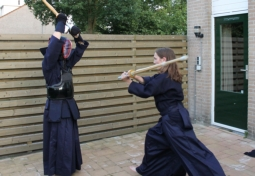 Kendo practice in the yard