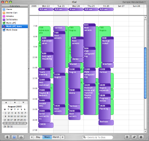 A screenshot of iCal
